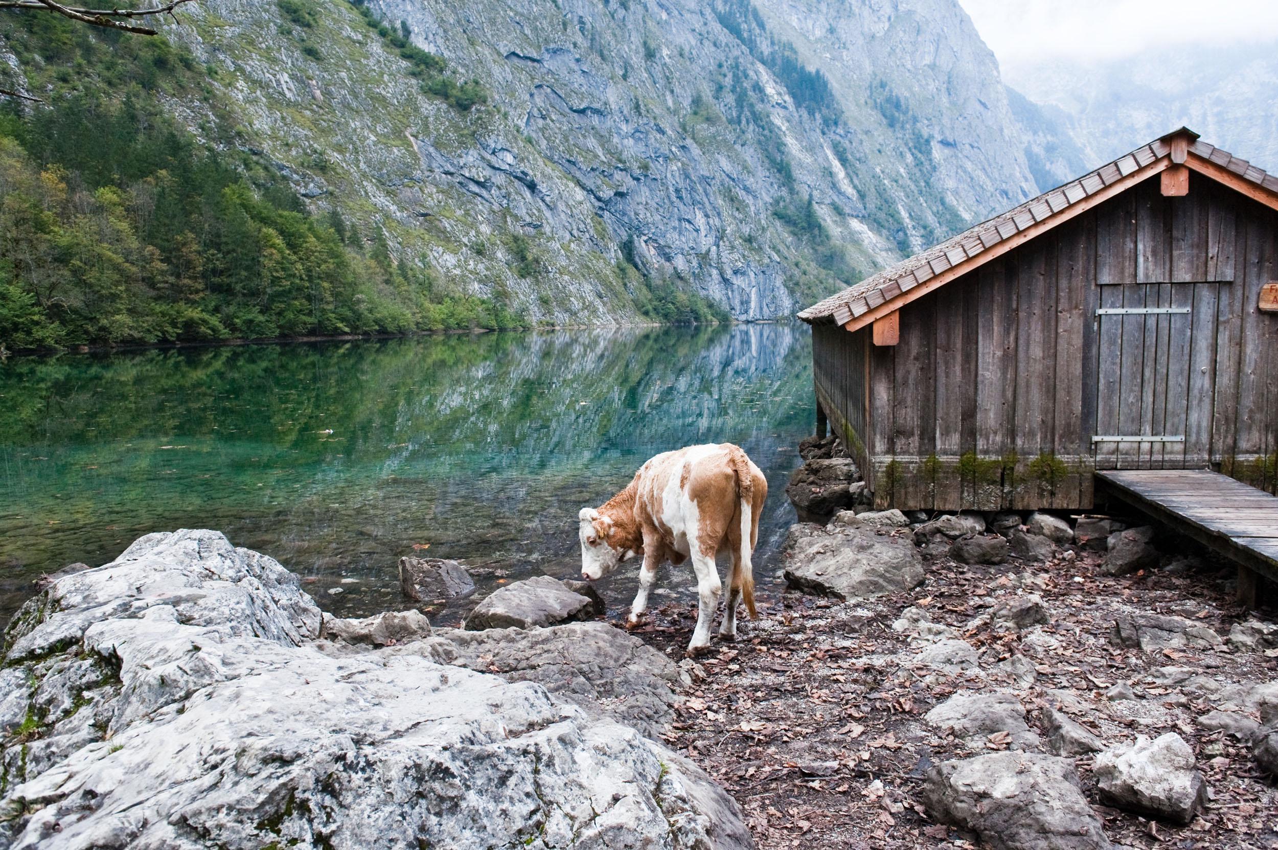 Landschaft Oberbayern – Peter von Felbert